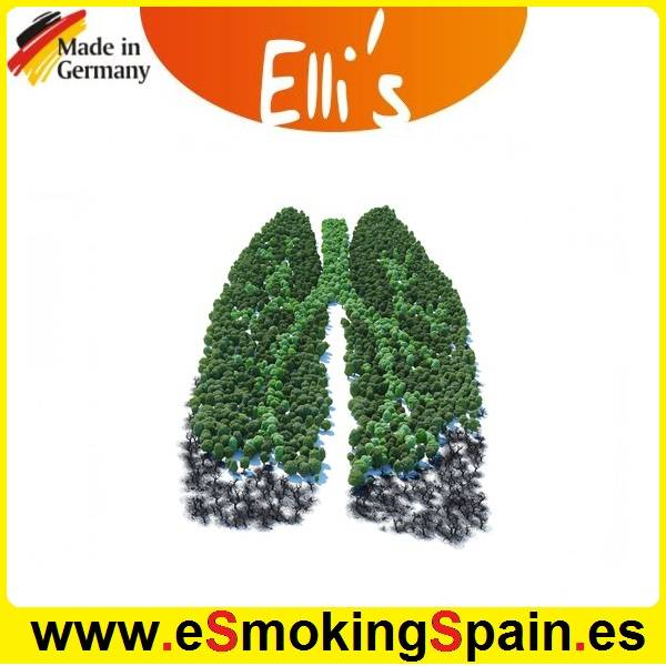 Flavor Ellis Hibernias Segen 10ml (E019)