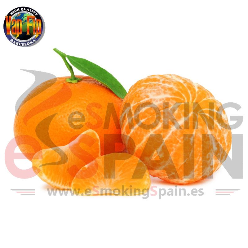 Flavour Concentrate Orange 10Ml (nº25)