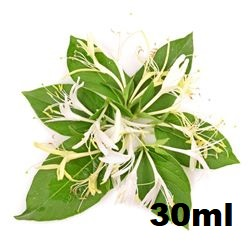 Aroma TPA Honeysuckle 30ml (nº148)