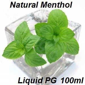 TPA Natural Menthol Liquid (PG) 100ml (nº202)