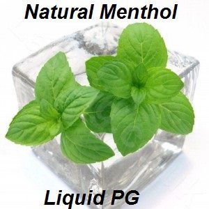 TPA Natural Menthol Liquid (PG) 10ml